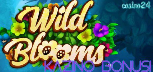 Synottip pavasara kazino bonuss